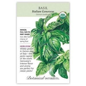 'Italian Genovese' Basil from Botanical Interests