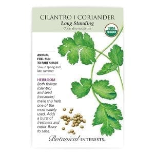 Coriander - Cilantro from Botanical Interests