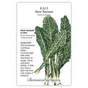 'Nero Toscana' Italian Kale from Botanical Interests