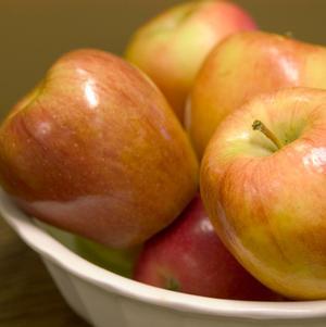 Malus 'Honeycrisp' - Apple