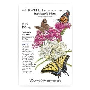 'Irresistible Blend' Milkweed - Butterfly Flower from Botanical Interests