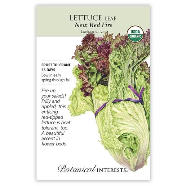 'New Red Fire' Leaf Lettuce from Botanical Interests