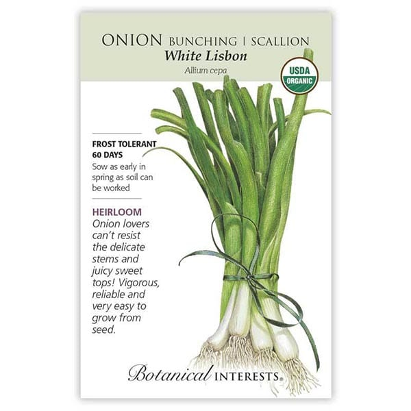 'White Lisbon' bunching onion from Botanical Interests