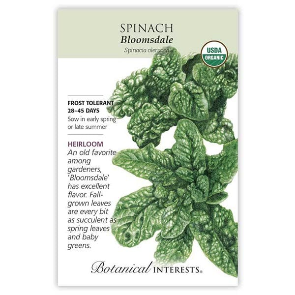 'Bloomsdale' Spinach from Botanical Interests