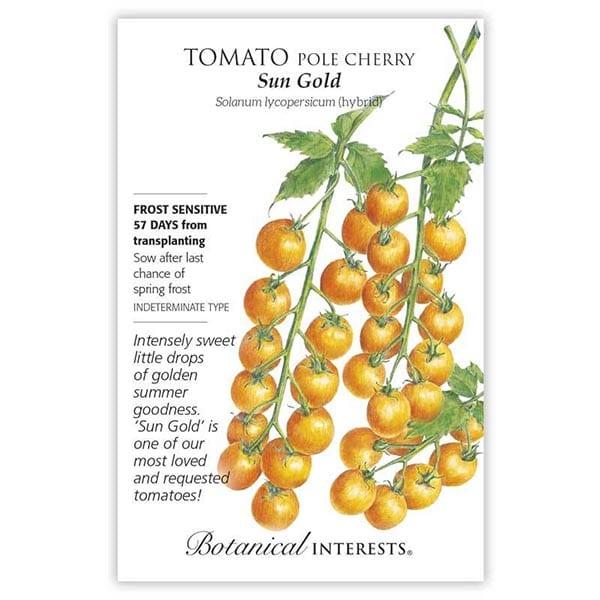 'Sun Gold' Pole Cherry Tomato from Botanical Interests