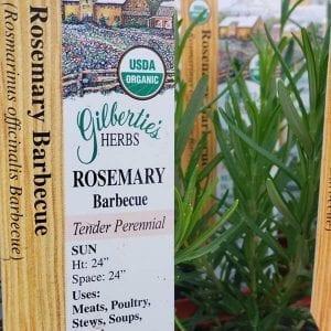 Rosemary - BBQ - organic