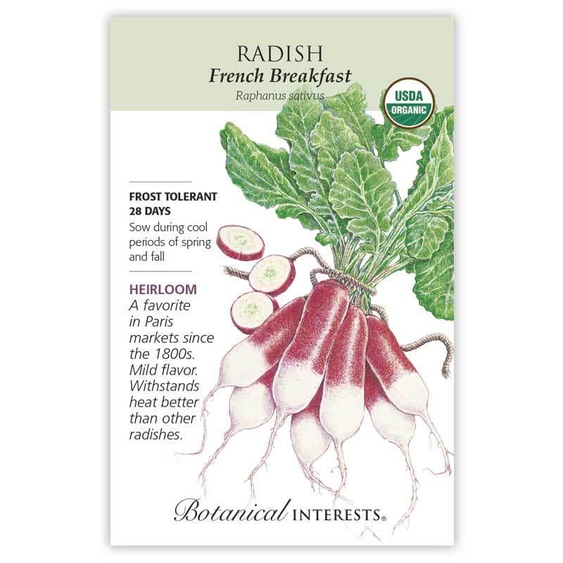 Radish French Breakfast Organic